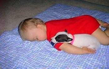 pets-and-babies-06.jpg